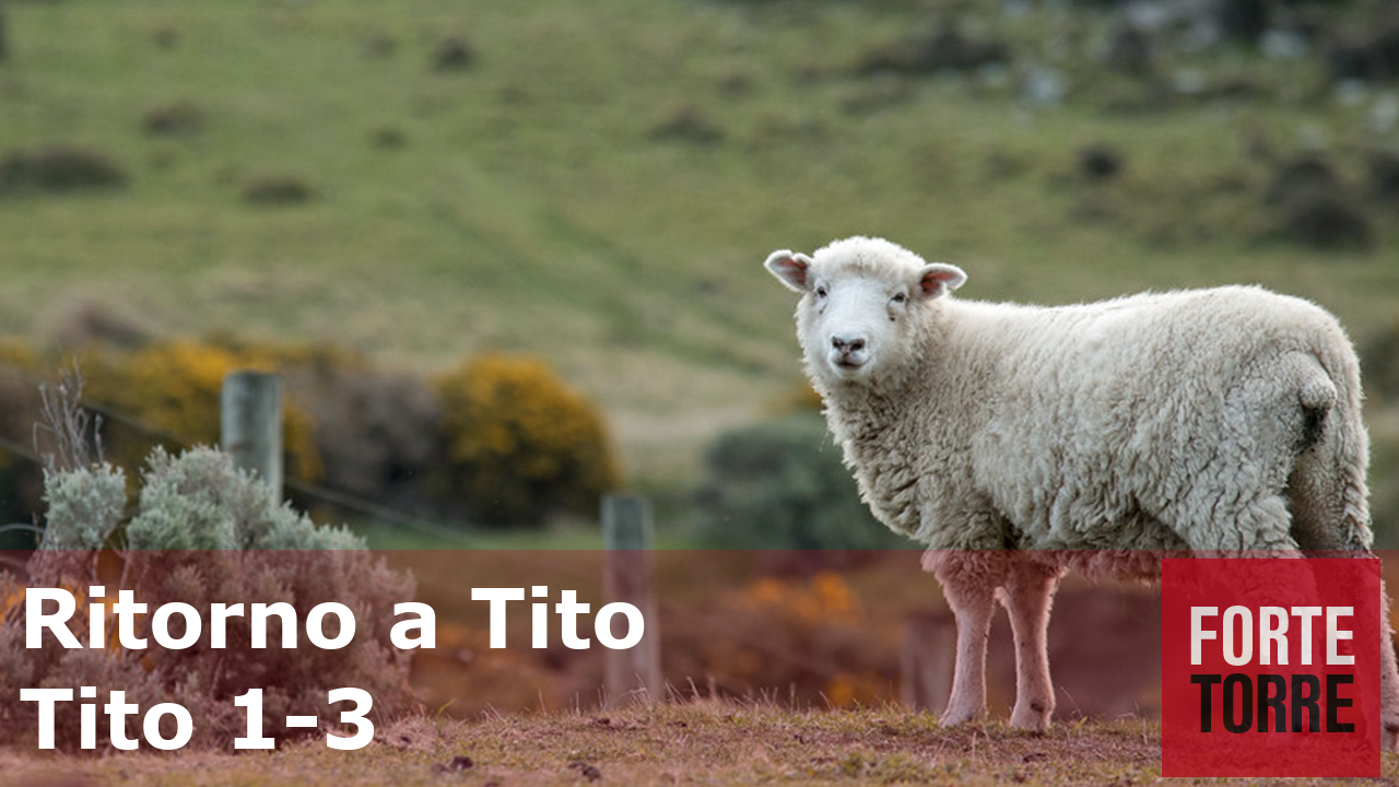 Principi dai Pastorali – Ritorno a Tito